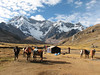 campground 2, Upispampa 4450m.  (Peru 2009, Upispampa 4450m. Ausangate)