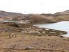 Lago Comerococha (Peru 2009, Teclla cocha 4800m - Abra Campo Pass 5030m - Pacchanta 4300m.  Auzangate )