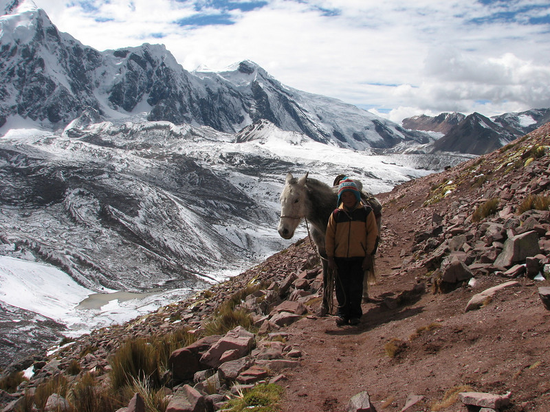 the donkey boy (Peru 2009, Teclla cocha 4800m - Abra Campo Pass 5030m - Pacchanta 4300m.  Auzangate)
