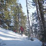 Mount Arrowsmith Winter Mountaineering December 2017
