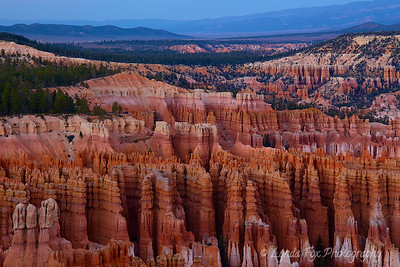 Hoodoos Reaching to the Sky
