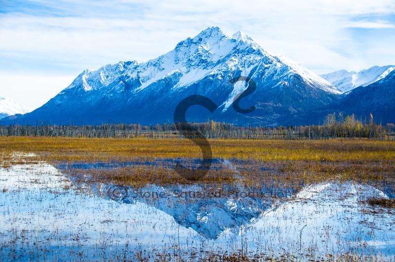 Pioneer Peak Reflection
