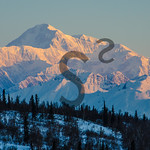 Denali at Sunrise
