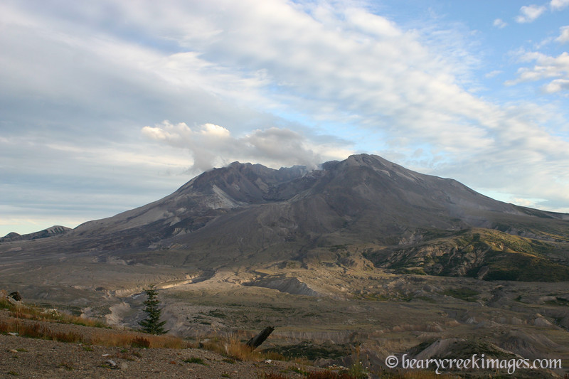 Mount Saint Helens National Volcanic Monument - 2007<br /> <br /> Twenty seven years after the blast, the direct path of the pyroclastic flow from the eruption is nearly a wasteland, with life just starting to return to the area.  The flow path can be seen dropping from the mouth of the caldera.