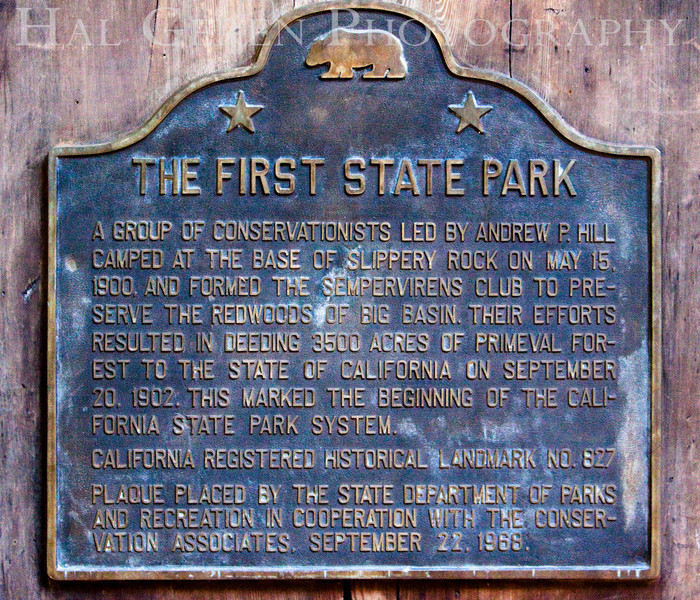 Big Basin State Park, California<br /> 0910BB-FSPM1