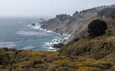 Coastal Vista Mid Coastal Region, California 1305C-V7