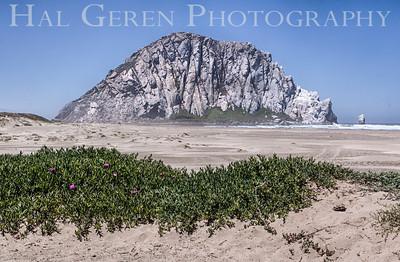 Morro Rock Morro Bay, Calfornia 1305C-MRH1