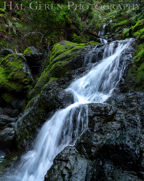 Cataract Falls<br /> Marin, California<br /> 1501C-F4