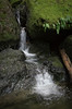 Cataract Falls<br /> Marin, California<br /> 1501C-F7