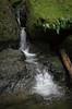 Cataract Falls<br /> Marin, California<br /> 1501C-F7