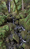 Cataract Falls<br /> Marin, California<br /> 1501C-F13A