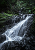 Cataract Falls<br /> Marin, California<br /> 1501C-F10