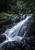 Cataract Falls<br /> Marin, California<br /> 1501C-F10