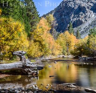 Rock Creek Eastern Sierra, California 1410S-ACH3A