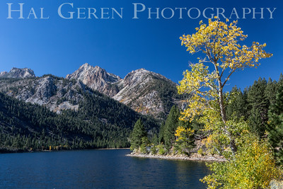 Twin Lakes, California 1410S-TL1