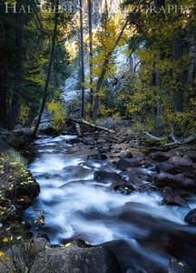 Lee Vining Creek Eastern Sierra, California 1410S-CLV2