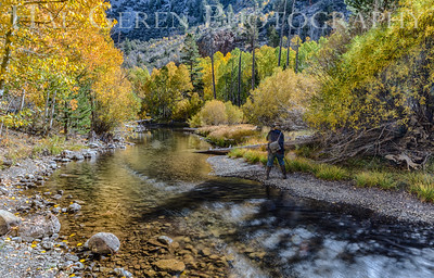 Rock Creek Eastern Sierra, California 1410S-ACH1