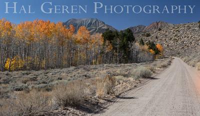 Walker Ranch Road, California 1410S-WC2