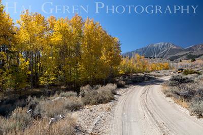 Aspen Eastern Sierra, California 1410S-A7