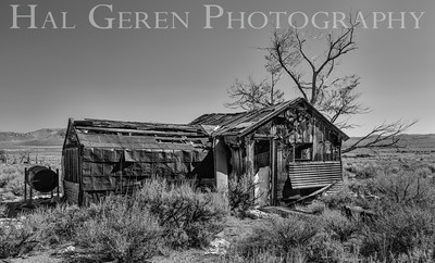 Abandoned Cabin Eastern Sierra, California 1410S-C5BW1