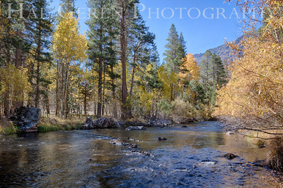 Rush Creek at Aerie Crag June Lake Loop, California 1310S-ACH7