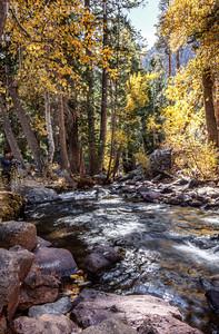 Lee Vining Creek Lee Vining, California 1310S-LVC15A