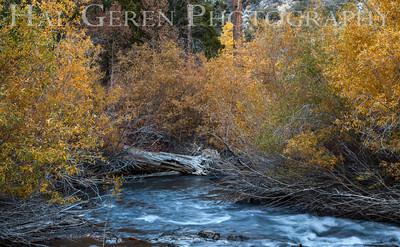 Rush Creek at Aerie Crag June Lake Loop, California 1310S-AC12