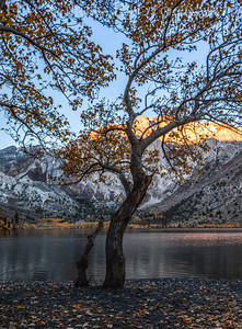 Convict Lake, California 1310S-CLTP2