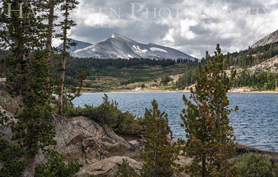 Ellery Lake, California 1207S-ELH3
