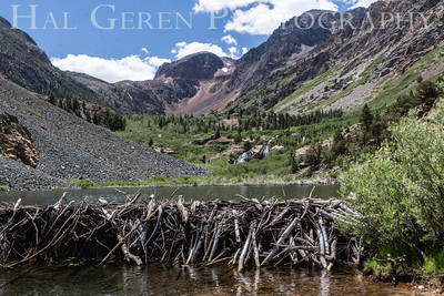Beaver Dam Lundy Lake, California 1207-LBD2