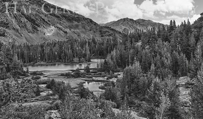 Ellery Lake, California 1207S-ELH1BW1