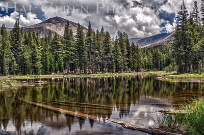 Starkweather Lake Yosemite, California 1207-SLH2