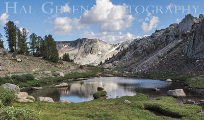 Saddlebag Lake area; Twenty Lakes region Tioga Pass, California 1207S-SL4