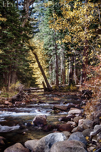 Lee Vining Creek Lee Vining Canyon, California 1210S2-SH5
