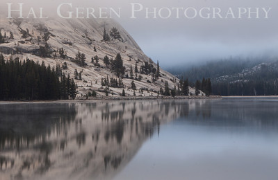 Tenaya Lake Yosemite, California 1210S-TL1