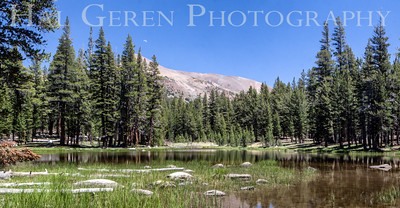 Starkweather Lake Yosemite, California 1407S-SL6