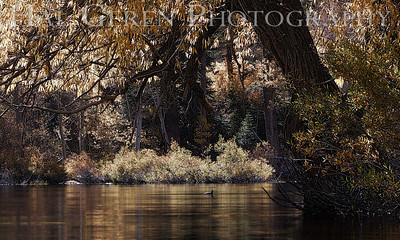 Lundy Lake Eastern Sierra, California 1110S-LLR9BW4