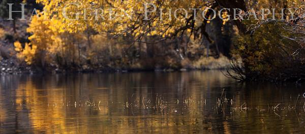 Lundy Lake Eastern Sierra, California 1110S-LLR6A