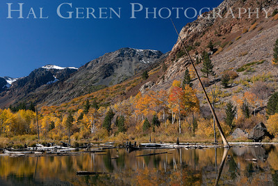 Lundy Canyon Mill Creek Lundy Lake Eastern Sierra, California 1110S-LS5