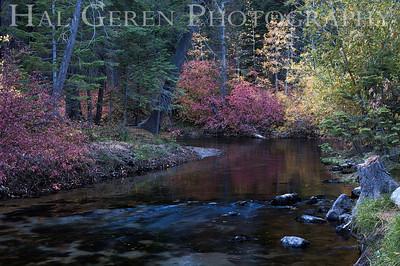 Lee Vining Creek Eastern Sierra, California 1110S-LVC1E1