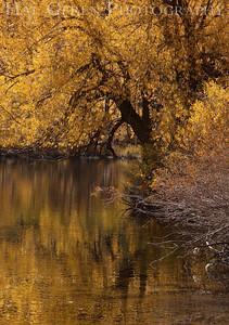 Lundy Lake Eastern Sierra, California 1110S-LLR1C