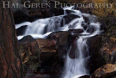 Lee Vining Creek Eastern Sierra, California 1110S-LVC5