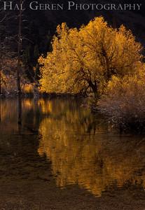 Lundy Lake Eastern Sierra, California 1110S-LLR1