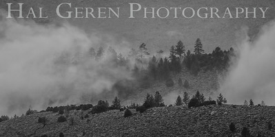 Mountain Mist Eastern Sierra, California 1807S-MM10BW1