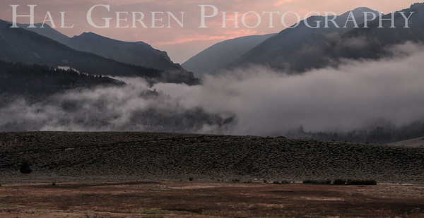 Mountain Mist Eastern Sierra, California 1807S-MM3
