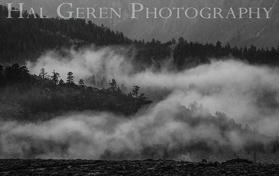 Mountain Mist Eastern Sierra, California 1807S-MM1BW1