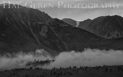 Mountain Mist Eastern Sierra, California 1807S-MM9BW1