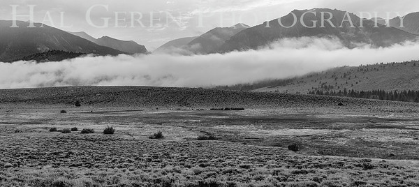 Mountain Mist Eastern Sierra, California 1807S-MM7ABW1