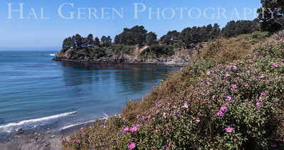 Van Damme Beach Mendocino Coast, California 1305M-VDBP2