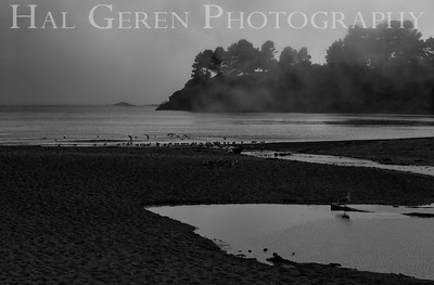 Van Damme Beach Mendocino Coast, California 1305M-VDB1